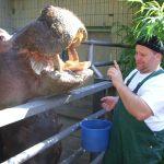 2008 - ein tag im Zoo mit - 05